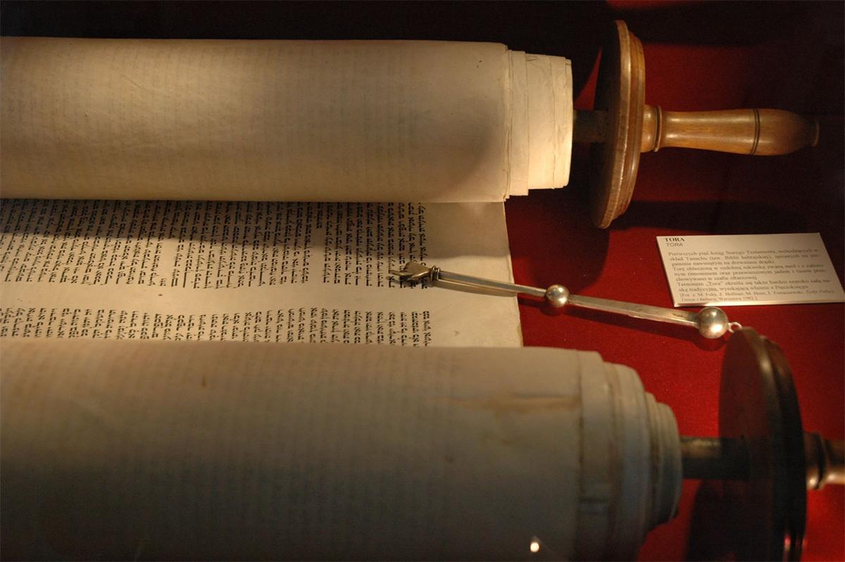 História do couro: o tecido mais antigo do mundo